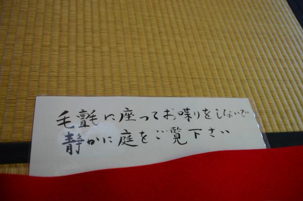 s500_DSC_4834_7719.JPG