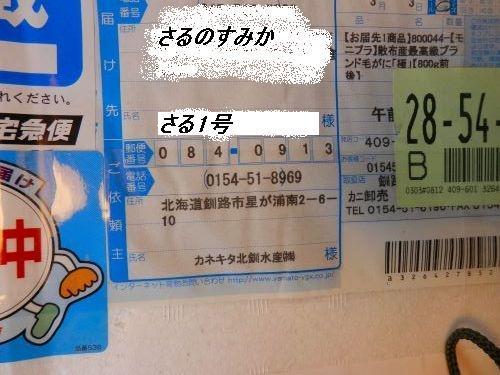s500_P3030547.JPG